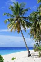 Jaki nocleg najlepiej wybrać wybierając się nad morze?